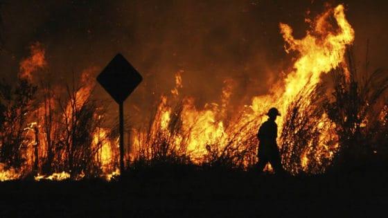 Australia herjes av skogbranner, og innbyggerne utsettes for omfattende desinformasjon. Foto: Shutterstock